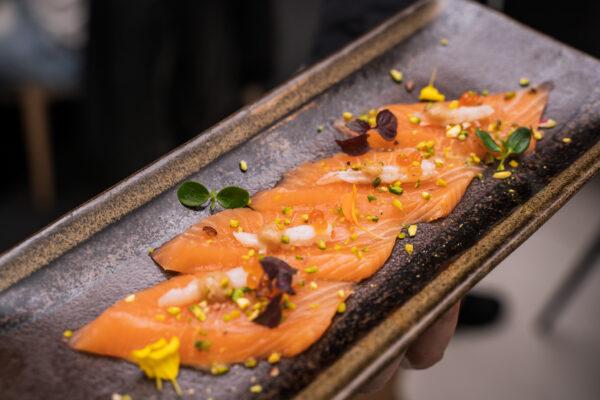 un salmone nel mediterraneo oishi teramo